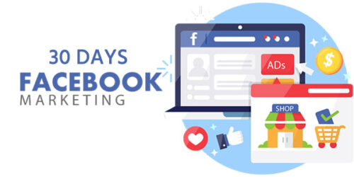 Facebook Marketing Service 30 Days